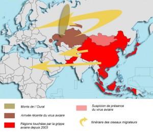Los grafos y la predicción de epidémias