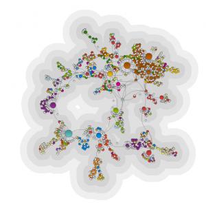 Especialista en Modelos y Optimización en Redes (V edición)